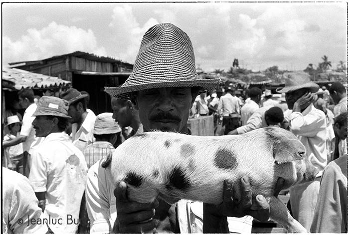 Bahia de todos os Santos market